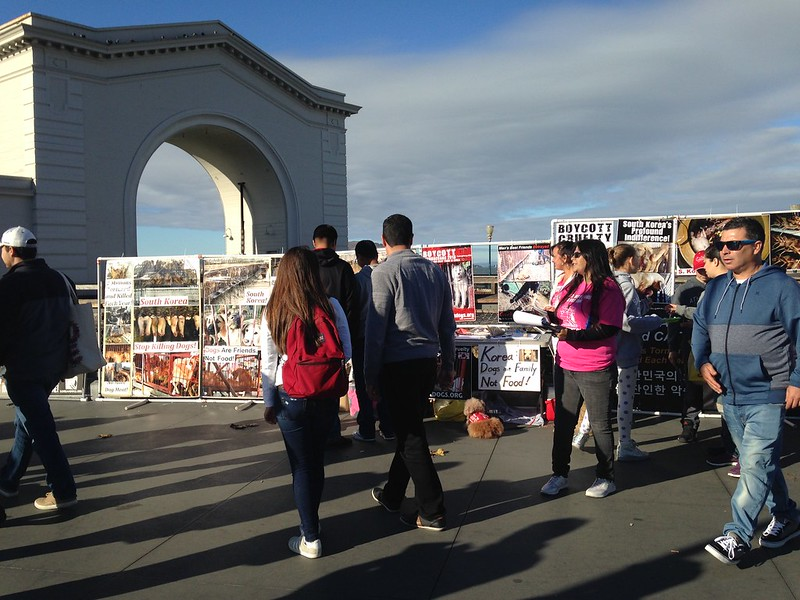 San Francisco, Fisherman's Wharf Leafleting Event – November 4, 2017