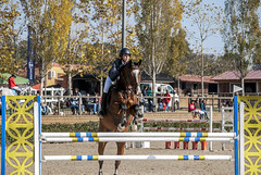 Hípica,  finales campeonato de Cataluña de Salto.