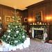 Presents round the tree