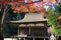 Photo:Worship Hall (haiden, 拝殿) of Hakusan Shrine (白山神社) By Greg Peterson in Japan