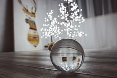 Xmas Lights   #GlassBallProject