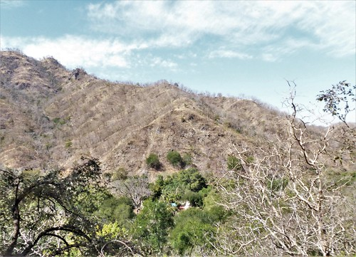 i-Kumbhagarh-Ranakpur-route (19)