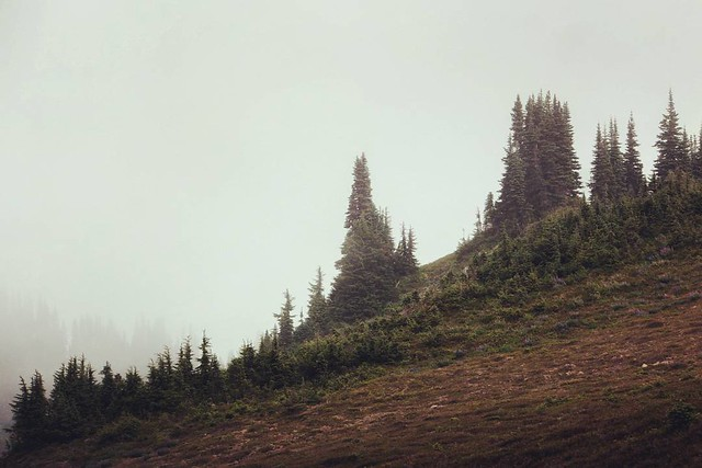 - #iota to the moon... an olympic national park high divide loop zen moment. chapter 29. - olympic national park, washington. on the high divide loop. summer 2017. http://ift.tt/1klghXx - #travel #backpacking #hiking #camping #mountains #adventure #landsc