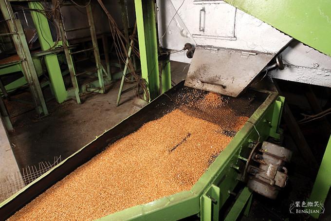 22焙炒小麥