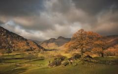 Langdale Autumn