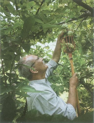 अरण्य फार्म में प्राकृतिक खेती की जाती है