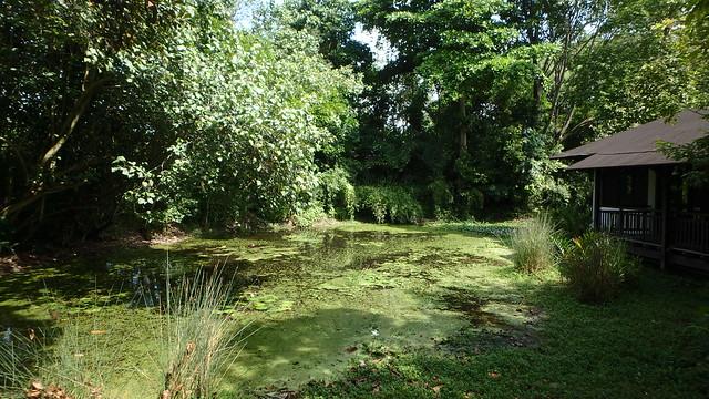 Sungei Buloh Wetland Reserve: Wetland Centre