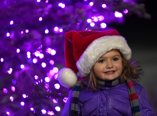 5th Annual Holiday Tree Lighting Ceremony
