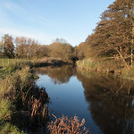 IW: River Itchen nearing Bishopstoke