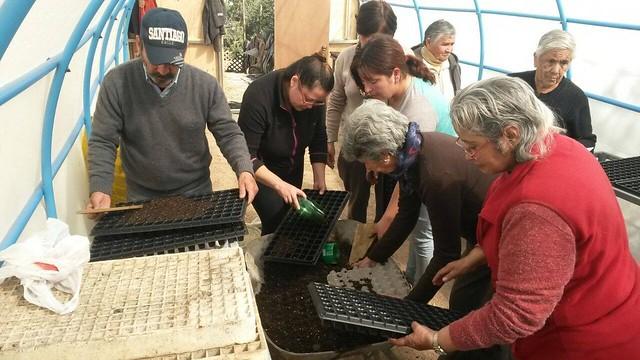 Innovador proyecto de permacultura urbana en barrio de Vallenar
