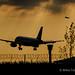 BA A319 silhouette