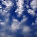 Small photo of Cloud meeting Altocumulus & Cirrus