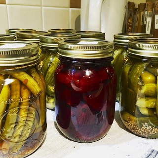 My first ever batches of spicy pickled beans, pickled beets, and pickles!