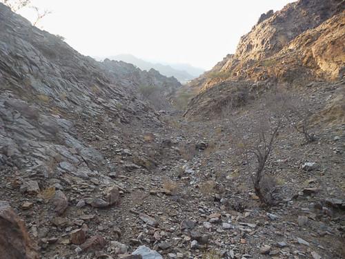 Dry wadi country