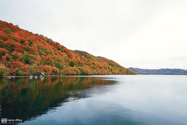 秋色是山巒中的一抹紅 | 15