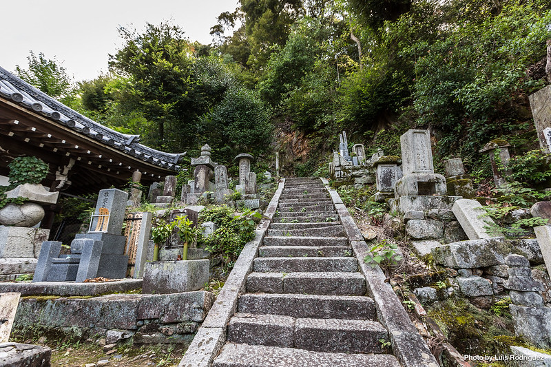 Chion-in-114