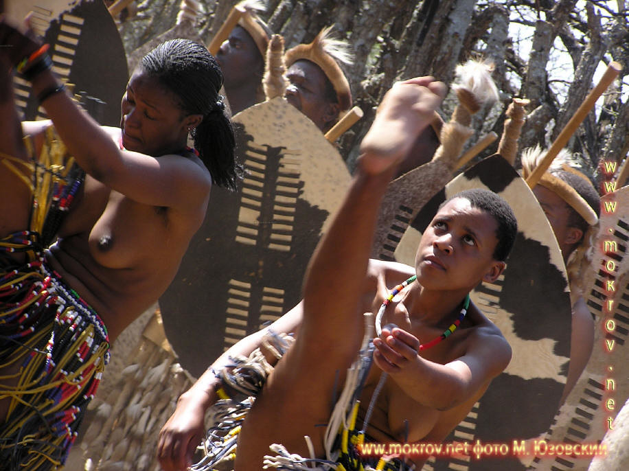Национальный Парк Крюгера ЮАР  (22)