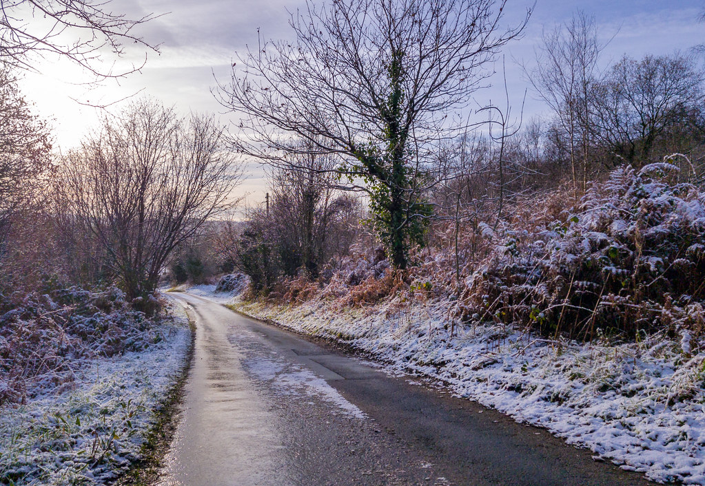 Wintery Scene (Samsung Galaxy S8+)