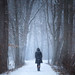 Walking In Solitude by NathanJNixon