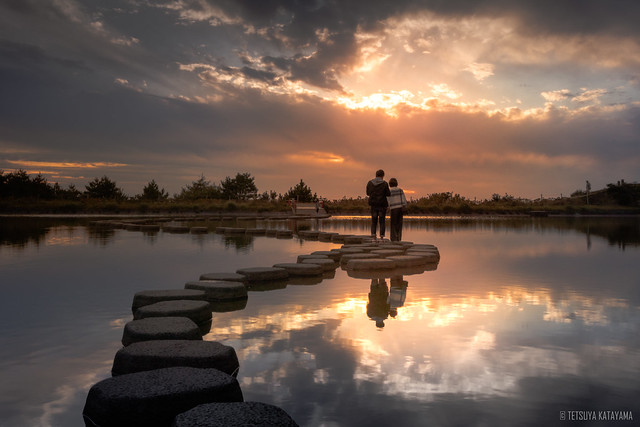 Stepping stones to the future