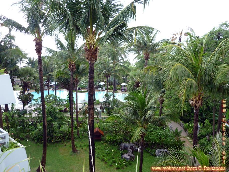 Палм - пляж в Таиланде фотографии