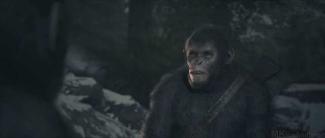 Planeta majmuna Posljednja granica - Tola