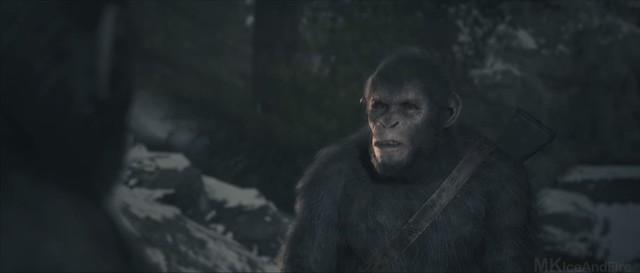 Планета обезьян Последняя граница - Тола