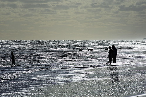 Observaciones, juegos, senderos en el mar...