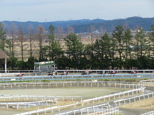 金沢競馬場の2コーナーを走る馬たち