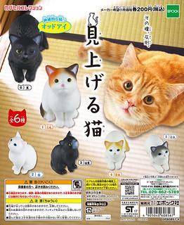 【更新官圖&販售資訊】EPOCH 「往上瞧的貓咪」療癒轉蛋之作!見上げる猫