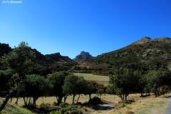 Cogollos de la Vega (Granada)