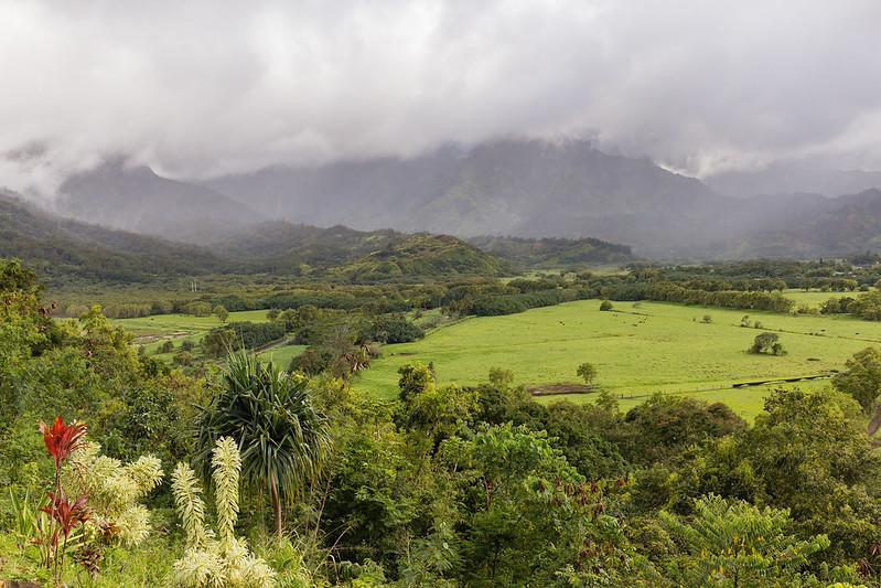 Hanalei Valley - Kauai - Hawaii