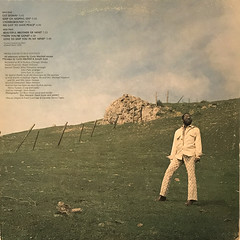 CURTIS MAYFIELD:ROOTS(JACKET C)