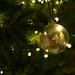 Saltram House Christmas Lights