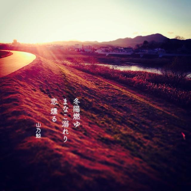 Photo:冬陽燃ゆ まなこ溺れり 恋 燻(くゆ)る[山乃鯨] #haiku #photohaiku #poetry #winter #micropoetry #冬 #フォト俳句 #Japanese #写真俳句 #snapseed #jhaiku #mpy #vss #3lines #poem #shortpoem #フォト575 #photo575 #tinypoem #love #sunshine  By Atsushi Boulder