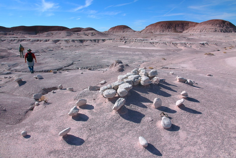 IMG_2099 Off the Beaten Path, Petrified Forest National Park