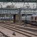 Class 66 66733 GBRf_C060411