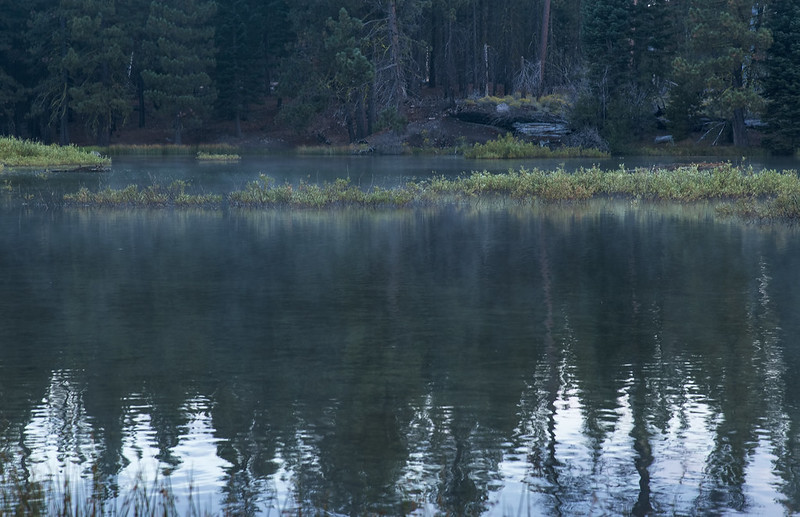 Misty Lake Manzanita before the dawn
