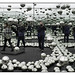 Let's Survive Forever - Yoyoi Kusama by GAPHIKER