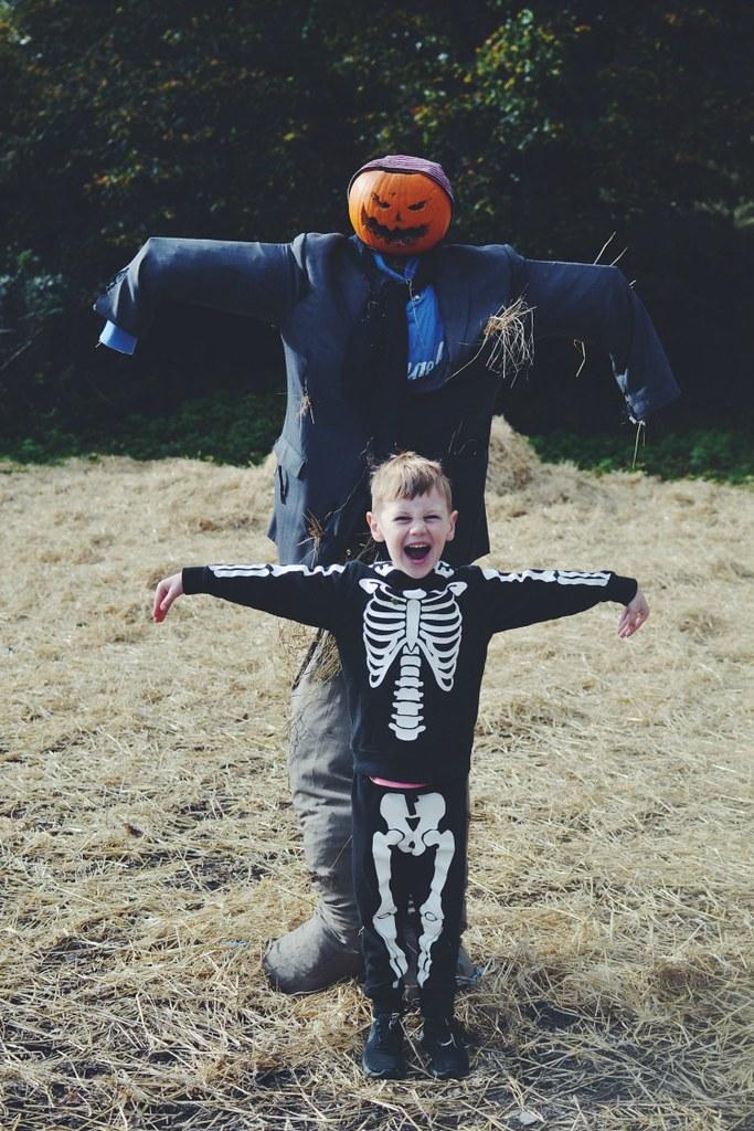 Halloween M Scarecrow