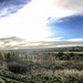 Chatterley Whitfield (panorama 1)