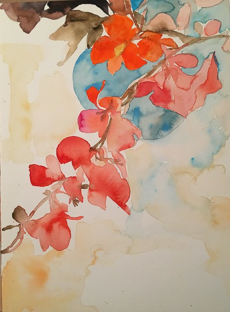 Coral quince, 2017, watercolor, 12x16