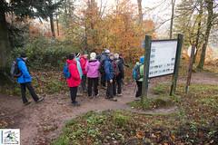 2017-11-19 10-41-08 Col du Litschhof - Wingen.jpg