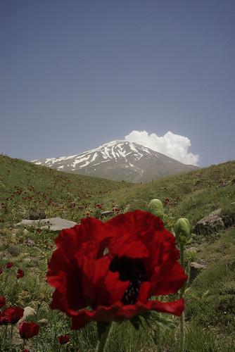 Damavand, Iran