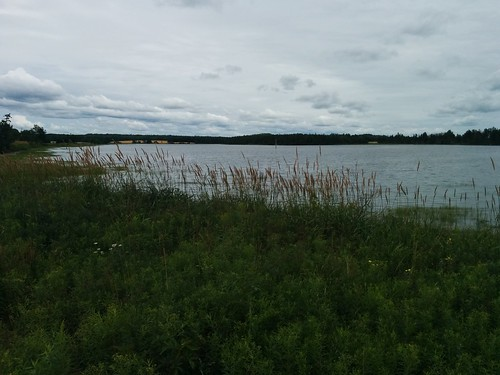 Towards Long Creek (3) #pei #princeedwardisland #belfast #campbuchan #longcreek #latergram