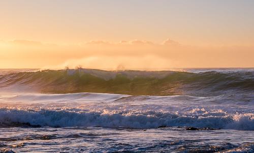 2M9A6661 - Berrara Beach