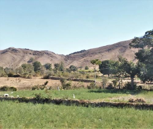 i-Mount Abu-udaipur (38)