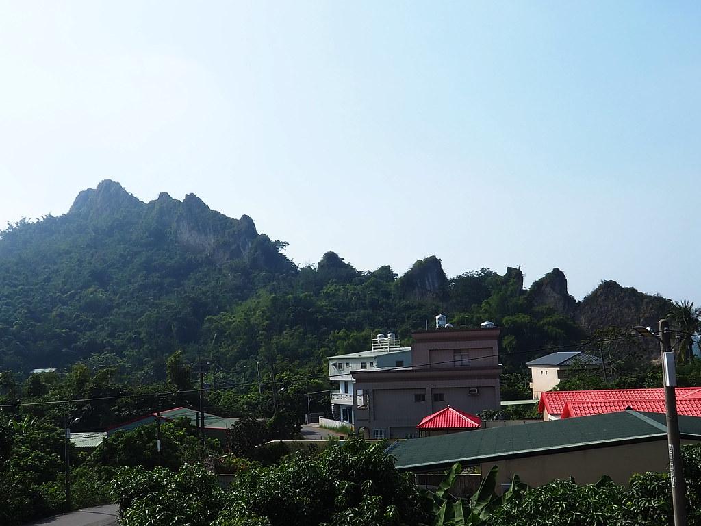 燕巢金山社區 (7)