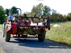 Clagett Farm Community Supported Agriculture Oct 28, 2017 at 1-057_sharing