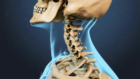 Obat Tradisional Tulang Pegal Linu
